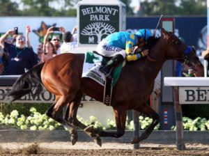From Pedigree: Belmont Stake Saturday