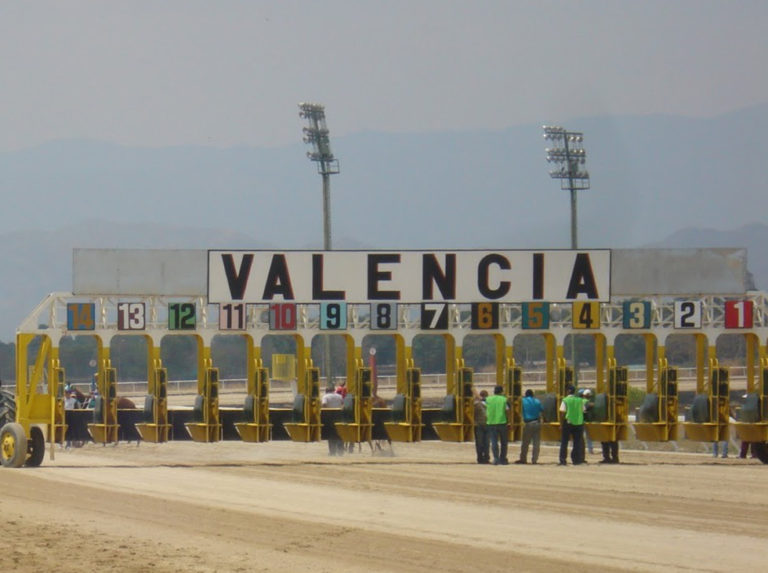 Carreras en Valencia a partir del 7 de noviembre